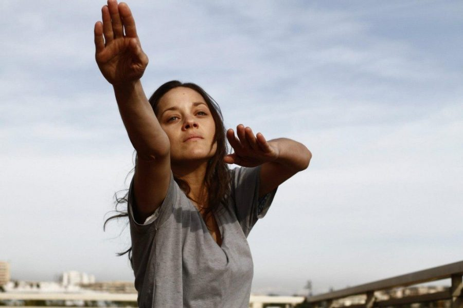Best Marion Cotillard Movies Top 10 Film Performances