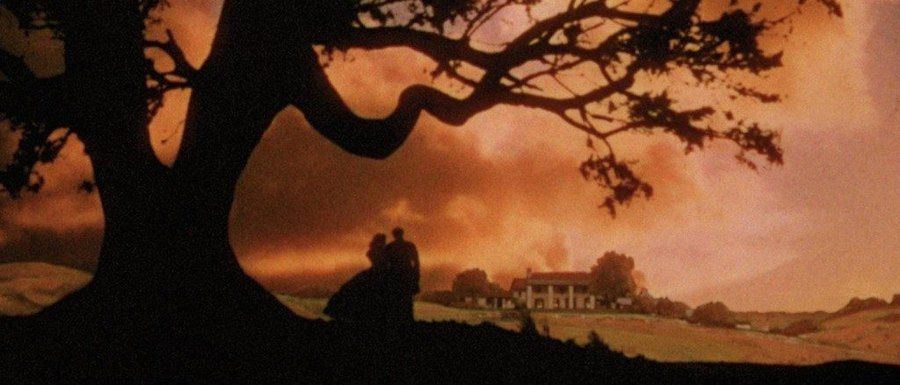 the various use of contrasts in the movie gone with the wind by victor fleming Cinema studies study play aspect ratio the ratio of the film image's width to its height victor fleming directed gone with the wind victor fleming directed wizard of oz and gone.