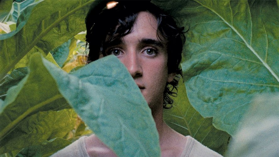 happy-as-lazzaro-