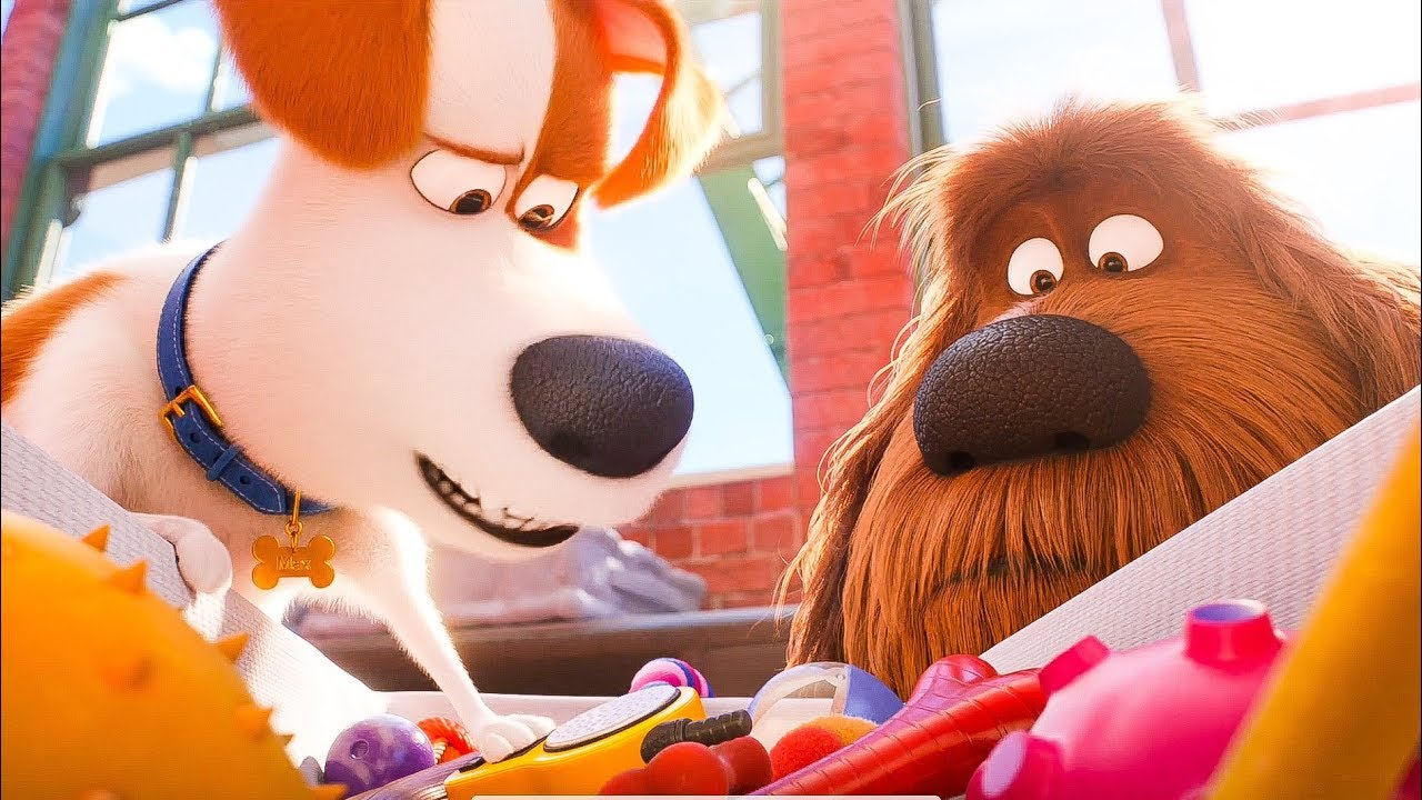 The Secret Life Of Pets 3 Release Date Cast Theories Rumors News