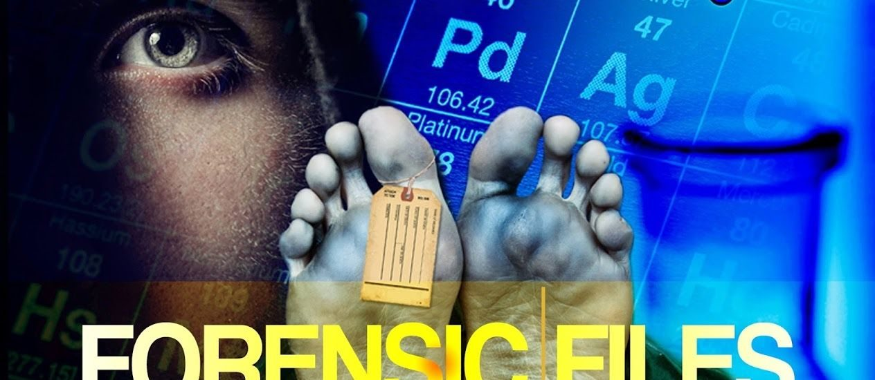 Shows Like Forensic Files 10 Must See Similar Tv Series Cinemaholic
