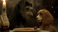 7 Best Movies Like Lady And The Tramp You Must Watch