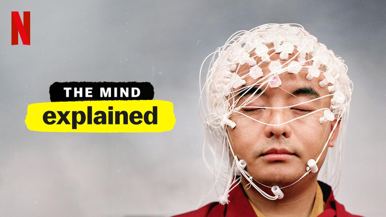 The Mind Explained Netflix Season 2  Release Date  Narrator  Renewed    Canceled