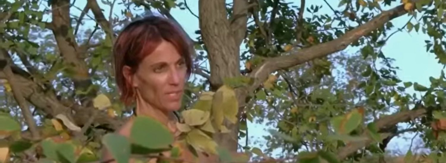 Watch Naked and Afraid XL - Season 6 | Prime Video